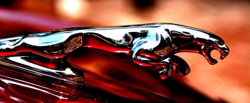 Jaguar-hood-ornament-chrome-leaper-emblem