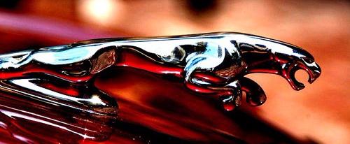 Jaguar-hood-ornament-chrome-leaper-emblem
