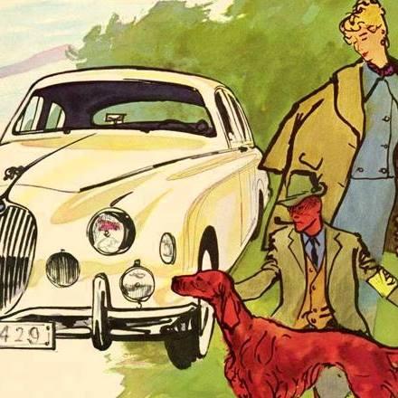 Jaguar Irish Setter